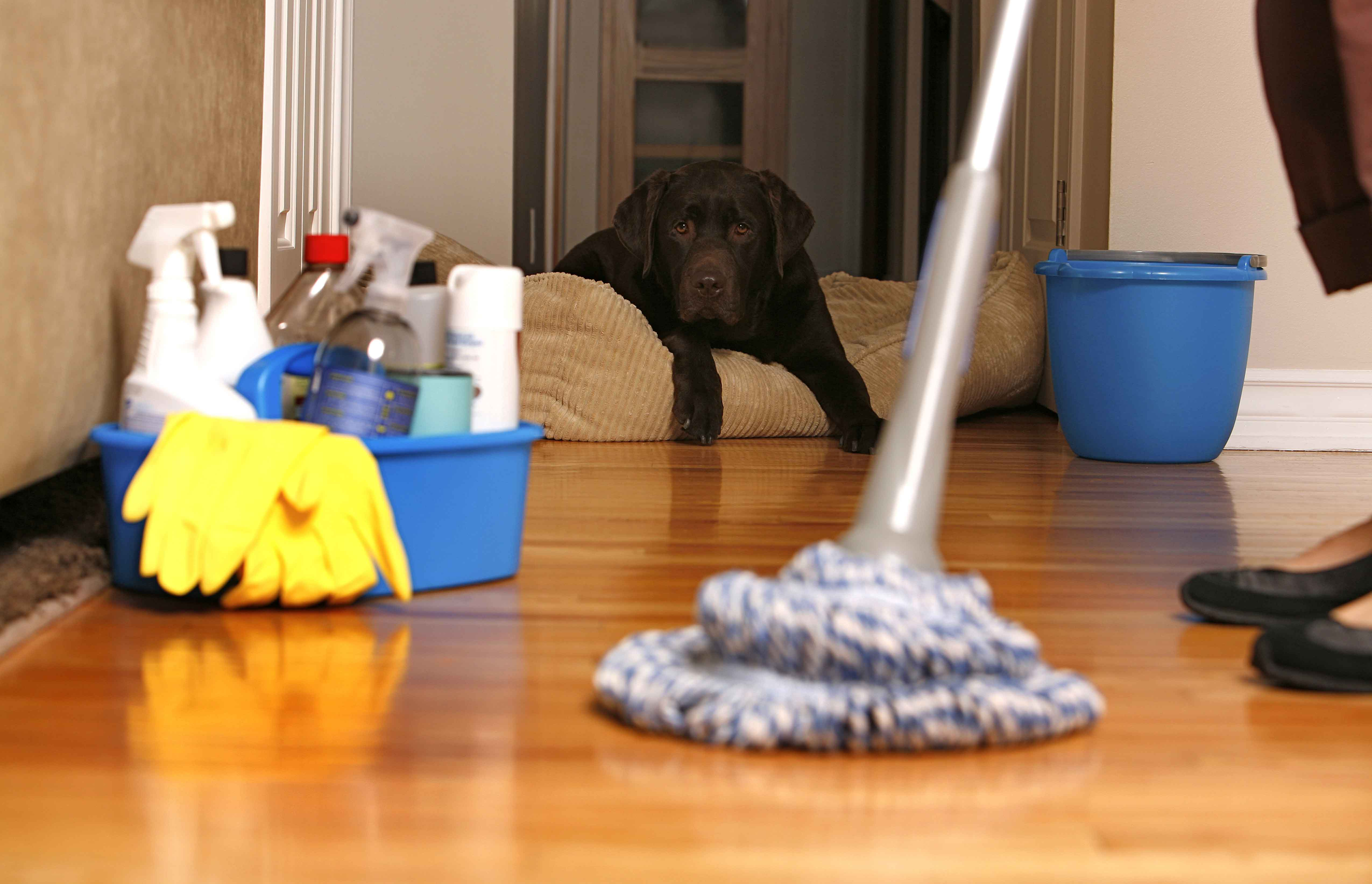 Five Ways To Keep Your House Clean On A Budget